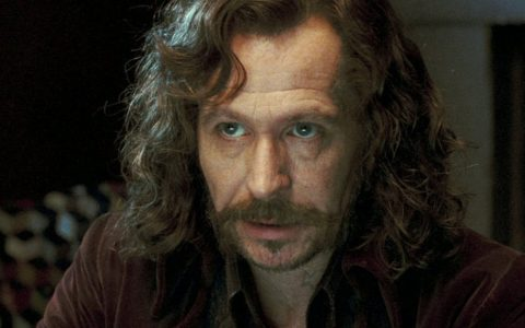 Gary Oldman - Sirius Black - Harry Potter