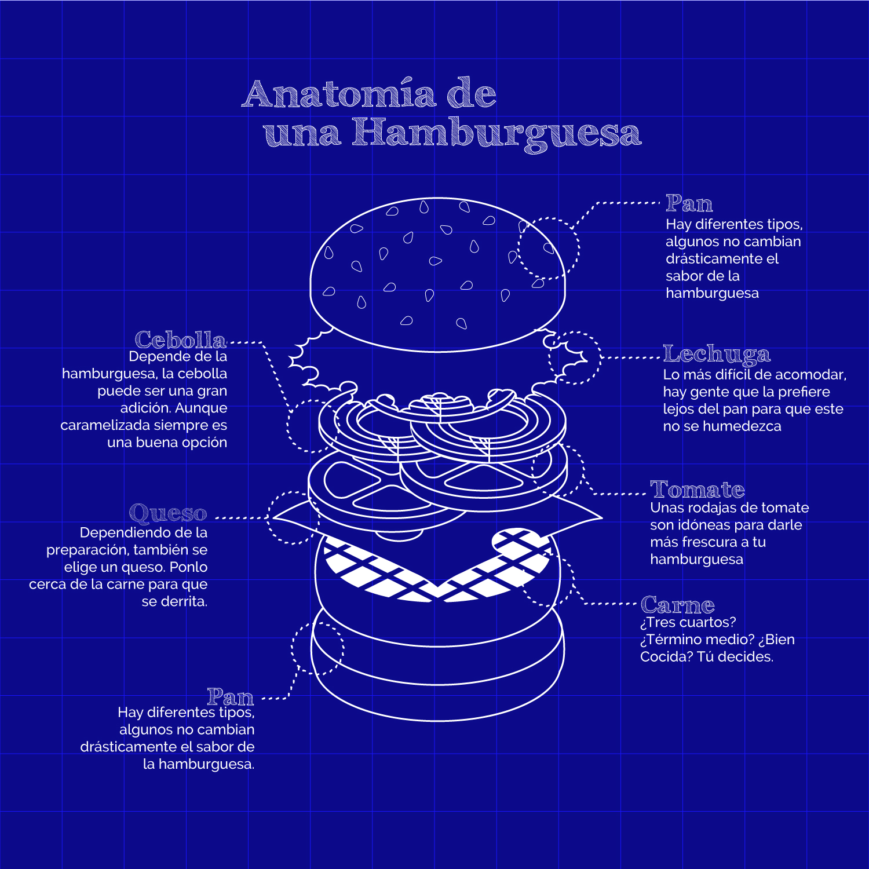 hamburguesa_anatomia