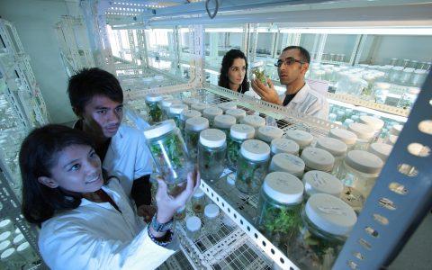 laboratory-385349_1280-1